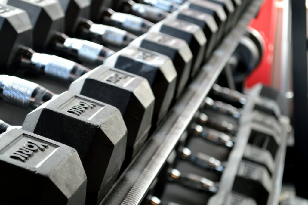 Set of dumbbells used for Dumbbell Bent Over Row