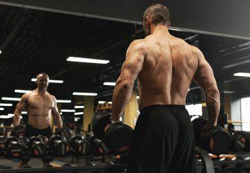 Shrugs on back or shoulder day