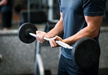 Big forearms small biceps